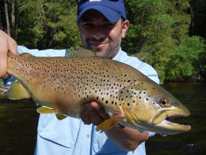 Best White River Fishing Report - Trout Fishing Reports for Arkansas - Fly Fishing Arkansas