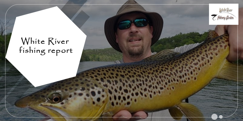 Fishing Answers You Can Find in a Fishing Report